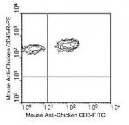 NBP1-28296 - CD45 / LCA