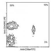 NBP1-28135 - CD45 / LCA