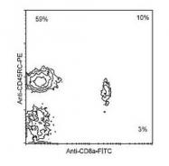 NBP1-28132 - CD45 / LCA