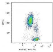 NBP1-50085 - CD48