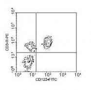 NBP1-28176 - CD122 / IL2RB