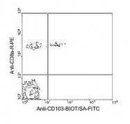 NBP1-28124 - CD103