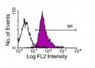 NBP1-27888 - CD18 / ITGB2