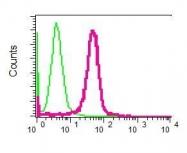 NBP1-95723 - UNC13D