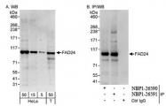 NBP1-26591 - NOC3L