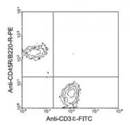 NBP1-26686 - CD3