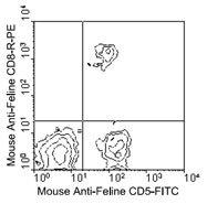 NBP1-28257 - CD8