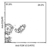 NBP1-28284 - T Cell Receptor / TCR alpha/beta