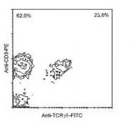 NBP1-28275 - T Cell Receptor (TCR) gamma/delta