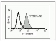 NBP1-18644 - CD309 / VEGFR-2 / Flk-1