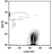 NB120-16231 - CD193 / CCR3