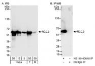 NB110-40618 - RCC2