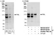 NB100-59788 - PML / RNF71