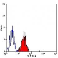 NB100-63323 - CD102 / ICAM2