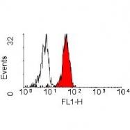 NB100-63662 - CD282 / TLR2
