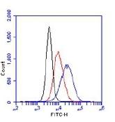 NB100-384 - Histone H2A.x