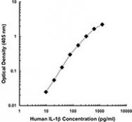 NB100-78219 - Interleukin-1 beta / IL-1B