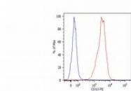 NB110-81623 - CD10 / Neprilysin