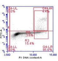 NB100-97852 - Histone H3