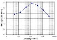 PAB14069 - Histone H3