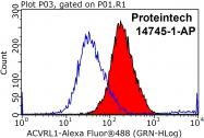 14745-1-AP - ACVRL1 / ALK1
