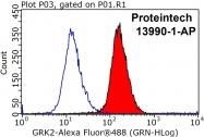 13990-1-AP - Beta-ARK-1 / ADRBK1