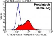 66037-1-Ig - ATP synthase subunit alpha
