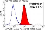 18274-1-AP - ATP6V0D1