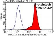 19976-1-AP - CD227 / Mucin-1 / MUC1
