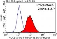 23614-1-AP - CD227 / Mucin-1 / MUC1