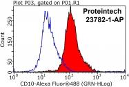 23782-1-AP - CD10 / Neprilysin