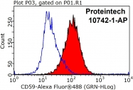 10742-1-AP - CD59