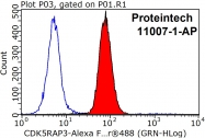 11007-1-AP - CDK5RAP3