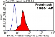 11090-1-AP - DNAJC7 / TPR2