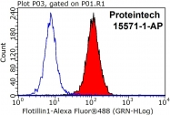 15571-1-AP - Flotillin-1 / FLOT1