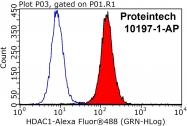 10197-1-AP - HDAC1