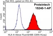 15240-1-AP - HLA class I  A-3 alpha / HLA-A