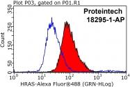 18295-1-AP - HRAS