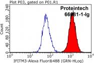 66081-1-Ig - IFITM3