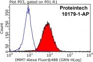 10179-1-AP - Mitofilin