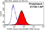 21738-1-AP - CD104 / Integrin beta-4