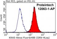 12063-1-AP - KRAS