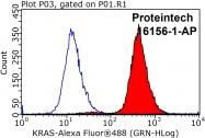 16156-1-AP - KRAS