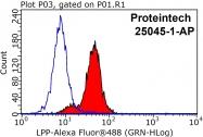 25045-1-AP - LPP