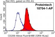 18704-1-AP - CD206 / MRC1