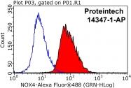 14347-1-AP - NOX4