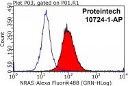 10724-1-AP - NRAS