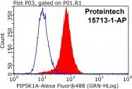15713-1-AP - PIP5K1A