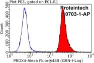 10703-1-AP - Peroxiredoxin-4 / PRDX4