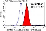 15187-1-AP - RBPMS / HERMES